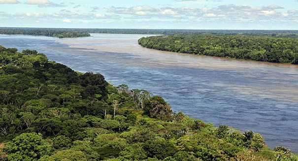Huge discovery deep in the Bolivian rainforest stuns scientists
