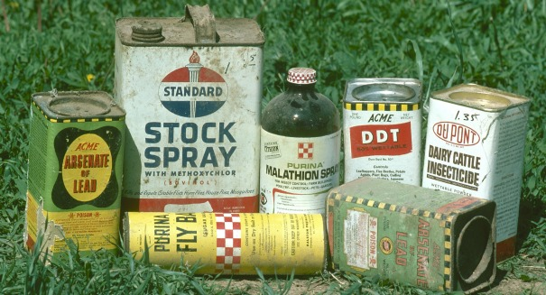 Frightening link between this pesticide and breast cancer