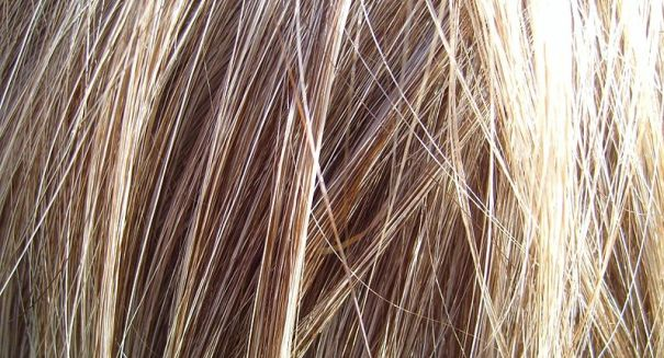 Scientists make huge discovery about human hair