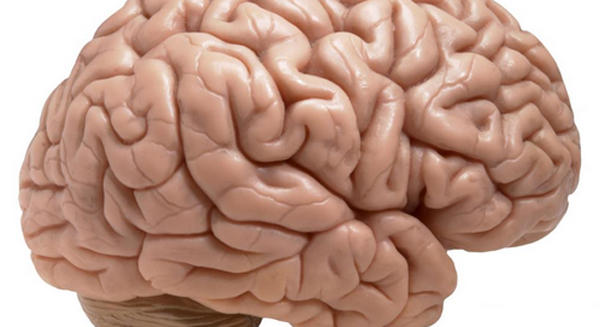 Scientists discover one simple trick for boosting your memory