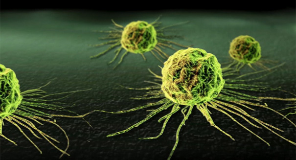 Breakthrough: Vitamin C destroys cancer cells