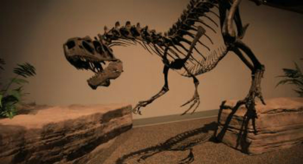 T Rex used its tiny arms for vicious slashing, explains study