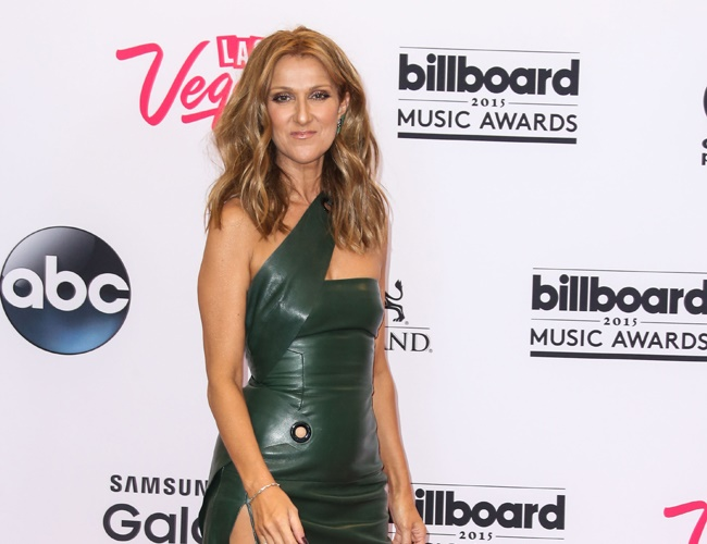 Celine Dion says her birth was an accident
