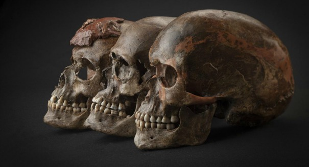 Scientists make stunning discovery about Ice Age Europeans