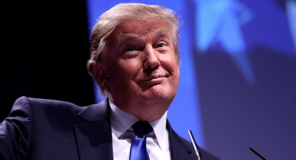 Uproar: Donald Trump scrambles into damage control after Muslim database comments