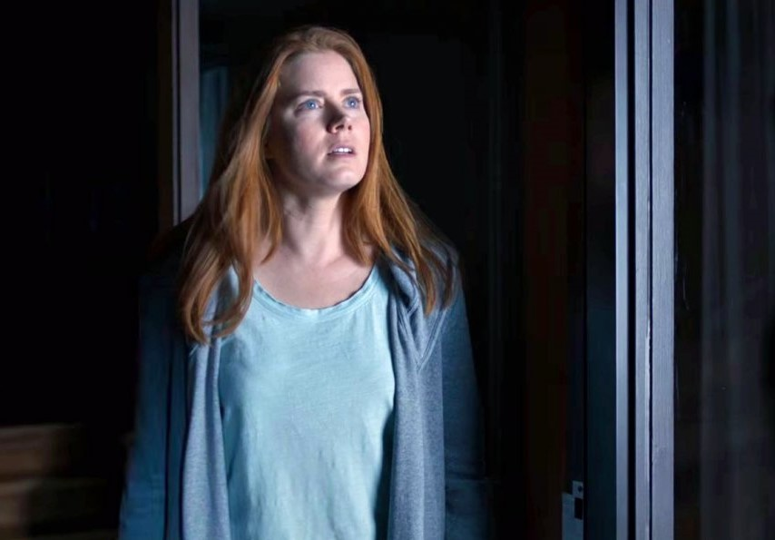 Amy Adams 'arrives' on the big screen again