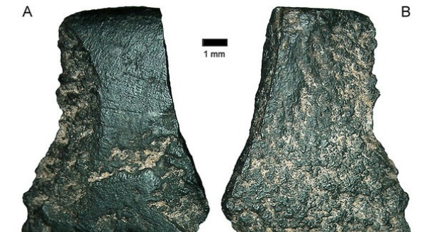 Scientists have just found the oldest hatchet in the world