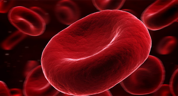 Study: Certain blood types may raise risk of heart disease