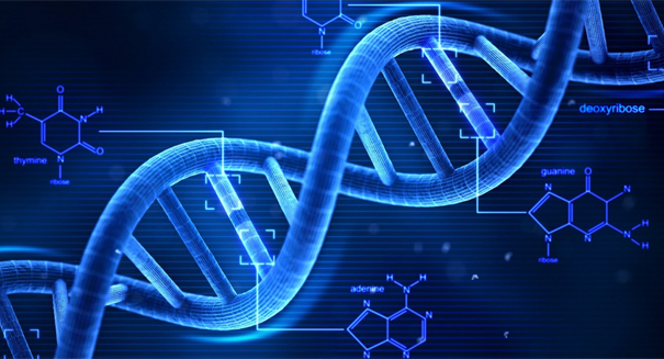 DNA to be used as a hard drive to store data for 2,000 years