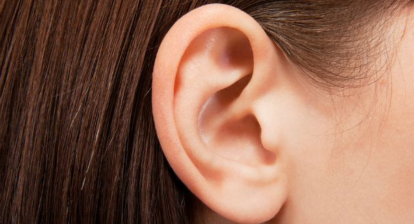 Huge breakthrough could cure hearing loss