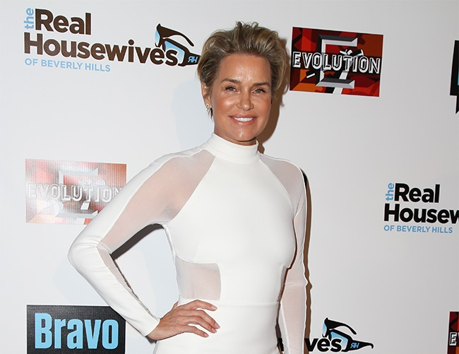 Yolanda Hadid is focused on finding Lyme Disease cure