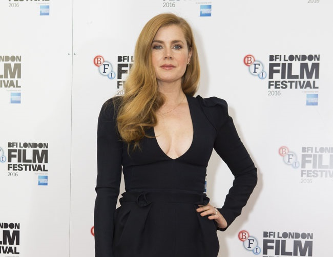 Amy Adams believes her hair color affected her success